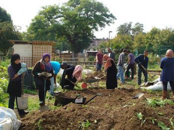 Mosque-community-garden